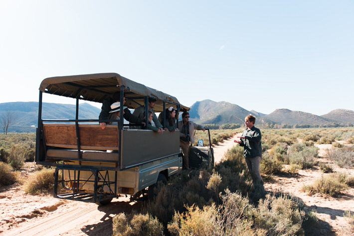 Aquila Safari morning full day tour