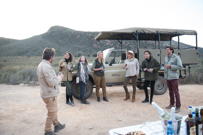 Aquila Safari morning game drive