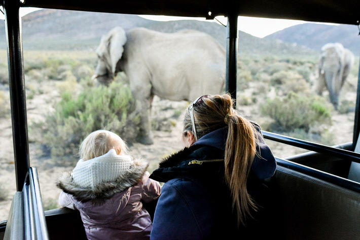 Aquila safari big five game drive tour