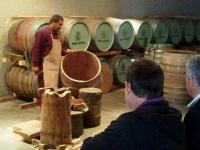 Cape Winelands Cape Town cellars