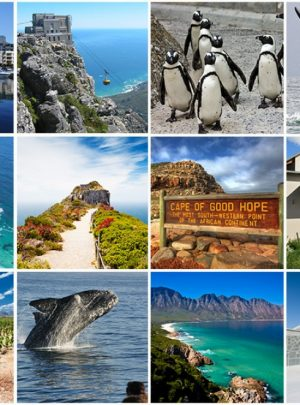 Day Tours in Cape Town